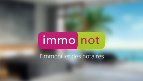 Immonot.com : l'interview
